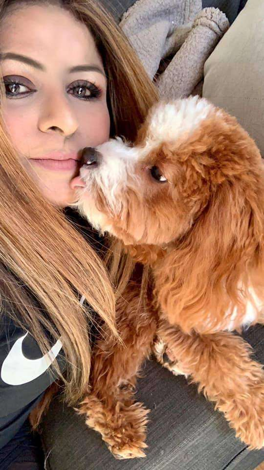 Me with rover cavapoo